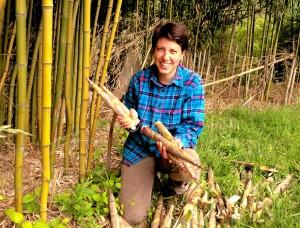 Greer bamboo